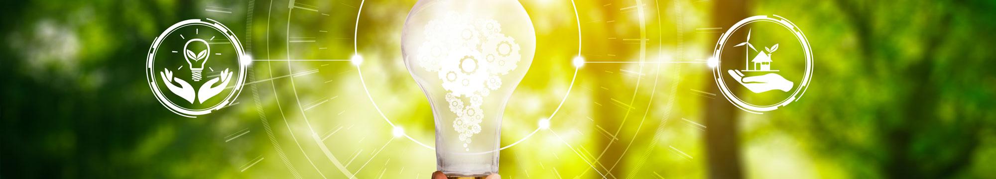 Què és la inversió sostenible i per què és un bon moment per invertir?